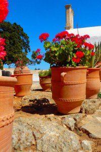 juni+vakanties+naar+Griekenland