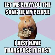 Transposing instrument humor