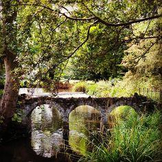 Morden Hall park, London #morden #mordenhallpark #ig_uk #ig_london #london #ukpotd