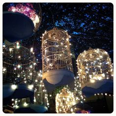 Bird cages and fairy lights