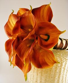 brown+Calla+Lily | Fall Color Calla Lily Bridal Bouquet by SongsFromTheGarden on Etsy