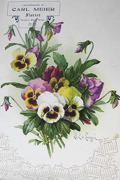 Paul de Longpré Calendar Flowers - Ad For Carl Meier Florist, Green Bay   c.1907