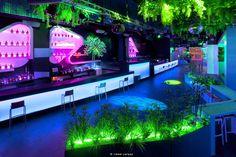 Blub Lounge Club-Elia Felices 10