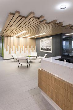 Newalta u. headquarters - in denver, co Modern Office Design, Office Interior Design, Office Interiors, Ceiling Design Living Room, Living Room Designs, Commercial Design, Commercial Interiors, Store Concept, Ideas Terraza