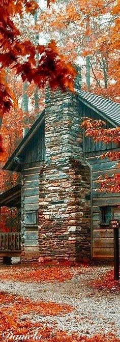 log cabin in the mountains. DesignNashville.com luxury lodge home accents, bedding, custom draperies