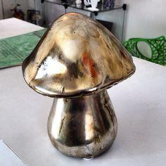 Cogumelos bronzeados
