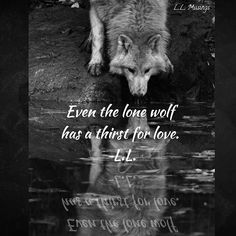 Even the lone wolf has a thirst  for love. ~ L.L. Pic artist: Unknown  #writer #poetry #poet #love #body #poetryporn #lifequotes #instagrampoets #hope #music #instapoets #poetrycommunity #sunrise #writerscommunity #llmusings #truth #muscle  #writersofinstagram  #quoteoftheday #igpoetry #typewriterpoetry #bodybuilder #writing #instapoetry #wolf #inspiration #relationships #selflove #life