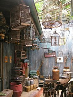 Schnazzy Bird Cages