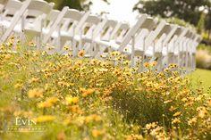 Cheekwood garden wedding
