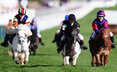 Annabel Candy rides Fordleigh Sophia (left) to victory in the Bonnie Shetland Race on Nov. 11, 2016 ... - Harry Trump/Getty Images