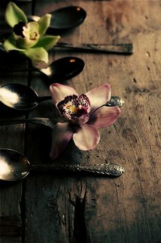 flowers on spoons