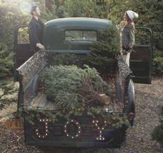 vintage green truck bringing JOY and Christmas trees