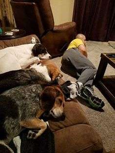 This Is The Way It Is At My House, I Don't Even Know What My Couch Feels Like Anymore