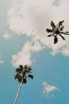 Staring up at the palm trees, summer vibes Photo Polaroid, The Beach, Beach Bum, Ocean Beach, Beach Towel, Photos Tumblr, Belle Photo, Pretty Pictures, Summer Vibes