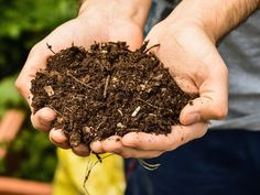If you have been keeping a compost pile, you have been
