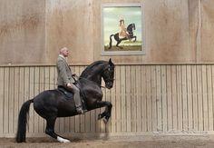 Academic Art of Riding - www.bentbranderup.de