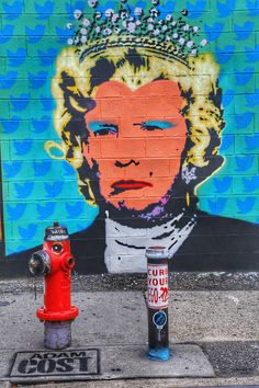 For 54 Weeks, I've Covered 'Resistance' Street Art Against Trump And I See No Sign Of Stopping Until He's Gone… | Bored Panda