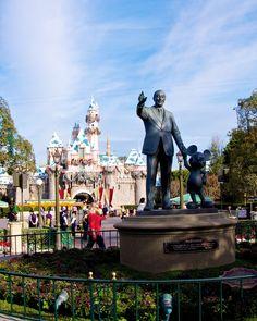 Disneyland in one day