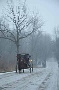 see these frequently in our area.when riding our bikes we pass slowly so as not to scare the horses Shipshewana - Amish Country Katrine Winter Amish carriage.see these frequently in our area.when riding our bike Winter Szenen, I Love Winter, Winter Magic, Winter Christmas, Amish Country, Country Roads, Winter's Tale, Snow And Ice, Snow Scenes