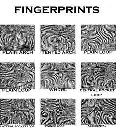 fingerprints http://blog.markseltman.com/2013/01/09/palmistry-and-the-index-finger/