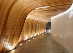 Timber wall to ceiling detail and inset wall lighting
