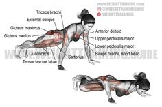 Best chest exercises for lower and upper chest | Weight Training Guide Best Chest Workout, Chest Workouts, Chest Exercises, Core Exercises, Plyometric Workout, Plyometrics, Fitness Workouts, Push Up Muscles Worked, Gain Muscle