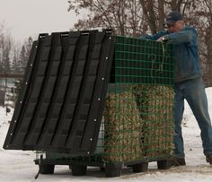 Filling the hay bale feeder