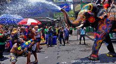 Songkran, Island Info Tours  http://islandinfokohsamui.com/
