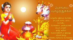 Best Happy Kanuma Panduga Subakamkshalu Greetings HD Wallpapers Best Happy Kanuma Wishes Telugu Quotes Pictures
