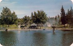 Gyro Swimming Pool and fountain, Cranbrook, BC, 1952. At the time it was the largest outdoor swimming pool in the world. The fountain is in Rotary Park in downtown Cranbrook today.