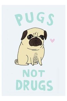 pugs, not drugs  I'm wearing this shirt right now !