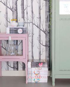 Kleurrijke kastjes, wij houden ervan. Roze: Farrow & Ball, Cinder Rose. Groen: Histor, Geordend. Interior Styling, Interior Design, Girls Bedroom, Bedroom Ideas, Pretty Pastel, Kid Spaces, Kidsroom, Paint Colors, Sweet Home