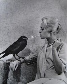 Tippi Hedren, 1962. Photograph by Philippe Halsman. The indispensable raven zippo