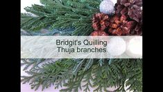 Bridgit's Quilling Thuja branches (with new Quilling Zigzag -Technique -...