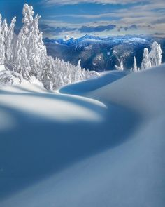 Winter Scene - Vancouver by Kevin McNeal.