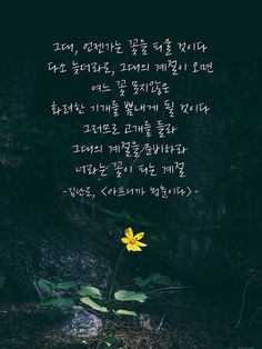 Good Vibes Quotes, Wise Quotes, Famous Quotes, Inspirational Quotes, Korean Words Learning, Korean Language Learning, Korean Writing, Korean Quotes, Life Advice