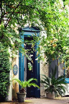 Charleston, SC - Blue/Green.  The frame of the doorway adds a lot of color.  The plants soften the look of the house.