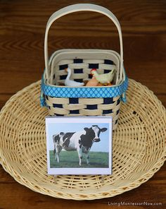 Matching Farm Animal Nomenclature Cards and Farm Animals Tray