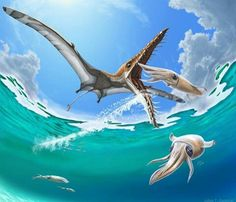 Prehistoric ocean life