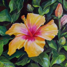 "Daily Paintworks - ""Hibiscus Sunset"" - Original Fine Art for Sale - © Donna Munsch Pastel Artwork, Oil Pastel Art, Oil Painting Flowers, Painting Art, Fine Art Auctions, Fine Art Gallery, Art Oil, Art For Sale, Hibiscus"