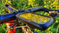 Catcher in the #rapseed  . . . #strava #stravacycling #cyclingphotos #cyclinglife #roadcycling #roadbike #stravaphoto #cycling #cyclist #cyclingshots #ciclismo #fromwhereiride #wymtm #garmin #bicycle #outsideisfree #flower #beatyesterday #cycle #bike #flowerstagram #bikeporn #stravaproveit #bici #biking #samsunggalaxys8plus