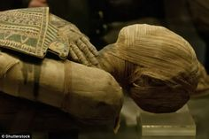 Scientists analysed ancient DNA from Egyptian mummies dating from 1400 BC to 400 AD and di...