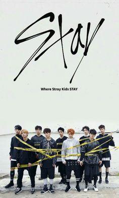 Stayyyyyy, love you so much ❤❤❤❤❤❤❤❤❤❤❤ Lee Min Ho, Kpop Backgrounds, Stray Kids Seungmin, Fandom, Crazy Kids, Kids Wallpaper, Ji Sung, Lee Know, Mixtape