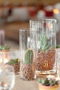 Style Me Pretty   Gallery   Tag   centerpiece   LOL I do believe those are cacti in those vases