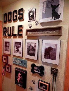 Dog Room Decor, Dog Bedroom, Pet Station, Puppy Room, Dog Area, Pet Cremation, Animal Room, Dog Food Storage, Dog Rooms