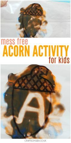 This mess free acorn