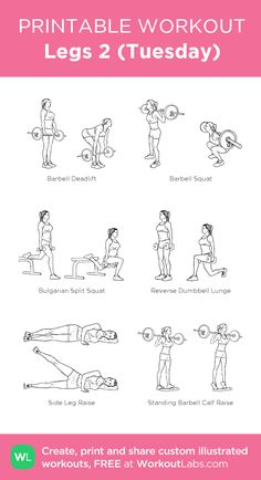 Legs 2 (Tuesday) · WorkoutLabs Fit – Diet Tips For Women Pilates Workout, Fitness Workouts, Workout Plan Gym, Planet Fitness Workout Plan, Leg And Glute Workout, Gym Workout Plan For Women, Leg Day Workouts, Gym Workouts Women, Gym Workout For Beginners