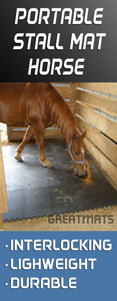 Stall mats don't have to be heavy and bulky when you travel. Here's a Great alternative to traditional rubber stall mats.
