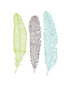 5 free feather printable art prints