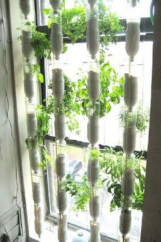 DIY Window Hydroponics for Any Horticulture Garden – Window Farm Installation Tutorial (VIDEO)